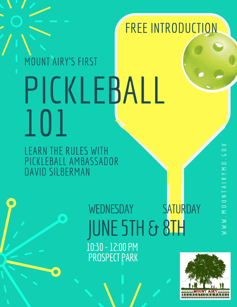 pickleball 101 flyer